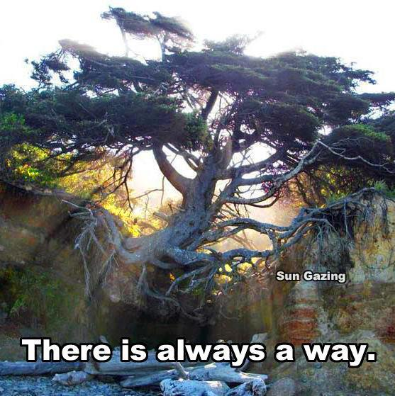 There Is No Way Back Quotes: Chant For Happiness: There Is Always