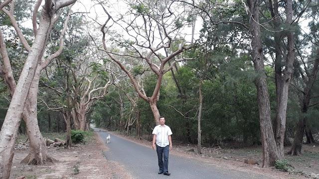 Những con đường đẹp và bình yên ở Côn Đảo