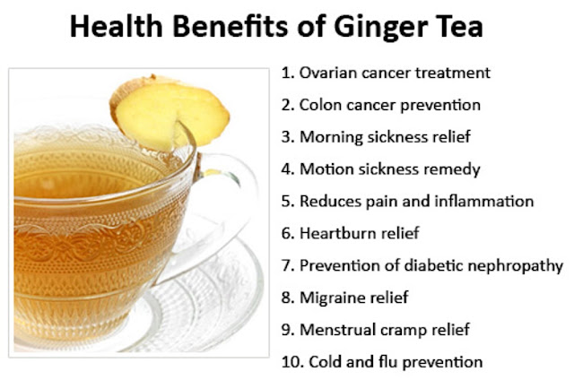 from legend to science the health benefits of tea Though most cancer organizations do not endorse the use of kombucha tea as a specific treatment option, that misses the point of kombucha's benefits, specifically as a daily health tonic meant to prevent disease and assist the body's natural processes.
