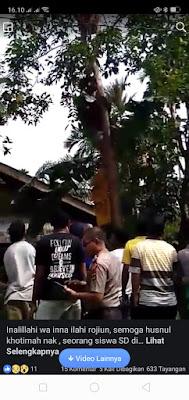 Breakingnews! Bocah SD di Tebo Ulu Tewas Tersengat Listrik di Pohon Jengkol