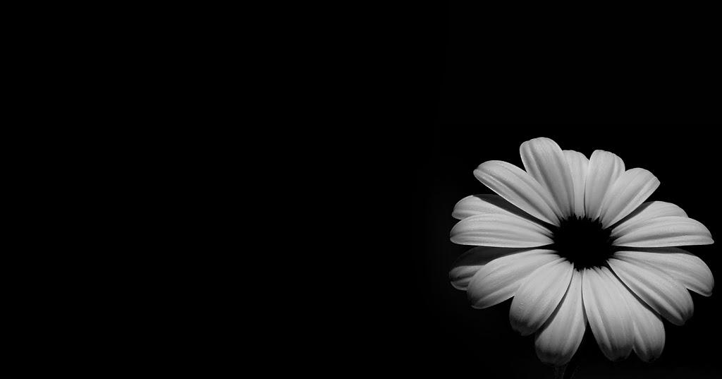 Зайчиками, картинки с надписями про любовь со смыслом на черном