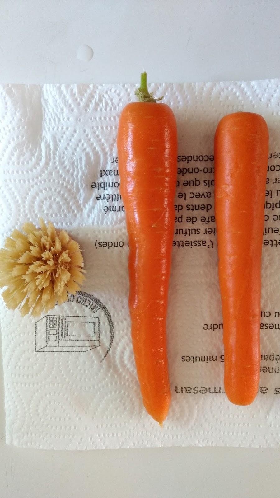 faire-macerat-de-carotte-maison