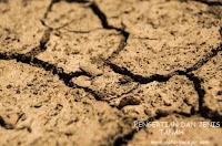 Pengertian tanah, jenis dan tingkat kesuburan tanah