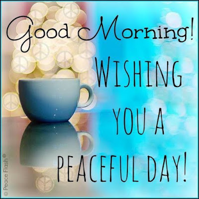 Good Morning Quotes For Best Friend:  wishing you a peaceful day!