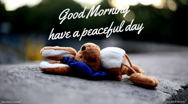 adorable good morning pictures