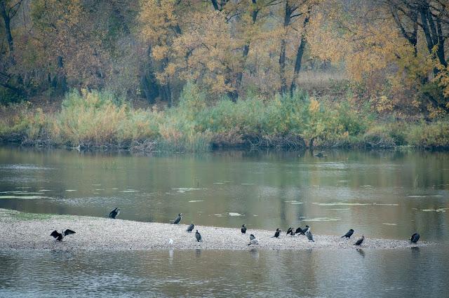Irtysh River, Semey