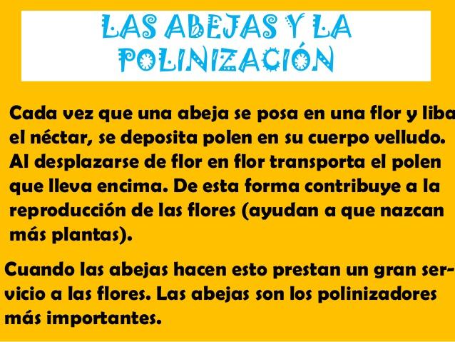 Image: LA VIDA SIN INSECTOS. LAS ABEJAS.Naturaleza Sostenible | ÉTICA Y ...