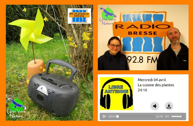Podcast radio Bresse Unis Vers Nature interview stage survie plantes sauvages