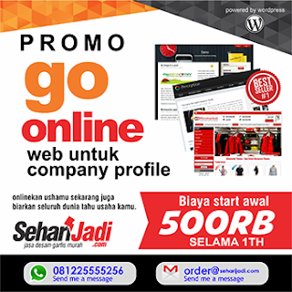 jasa bikin web murah