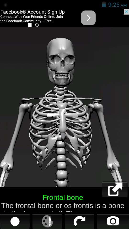 Exelent Take Anatomy Online Vignette - Human Anatomy Images ...