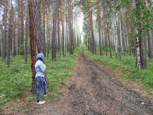 Дорога в окрестностях горы Сугомак на которую мы свернули