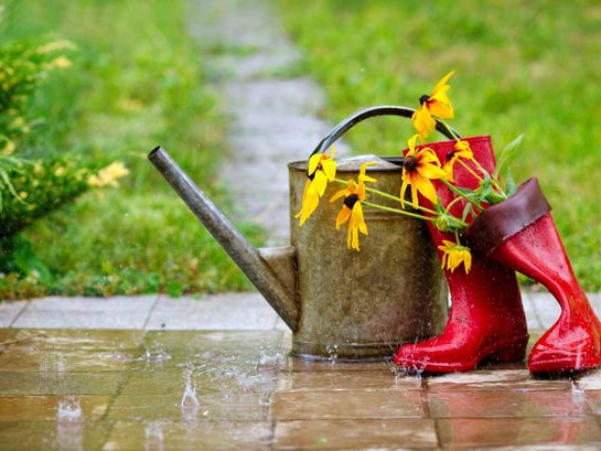 How Can You Make Your Garden More Usable In The Colder Months?