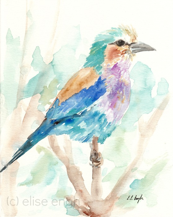 Watercolor Bird Painting by Elise Engh