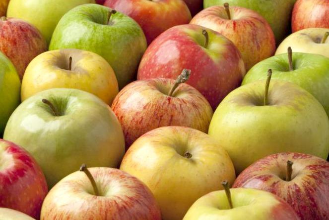 Bizcocho de Avena, Queso Crema y Manzana Golden