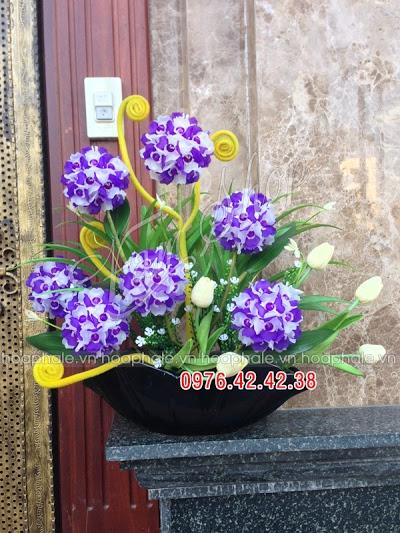 Hoa da pha le tai Ba Dinh