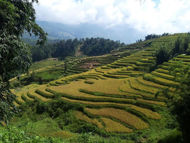 3 Days Of Enjoyable Experience In Sapa Tour 1
