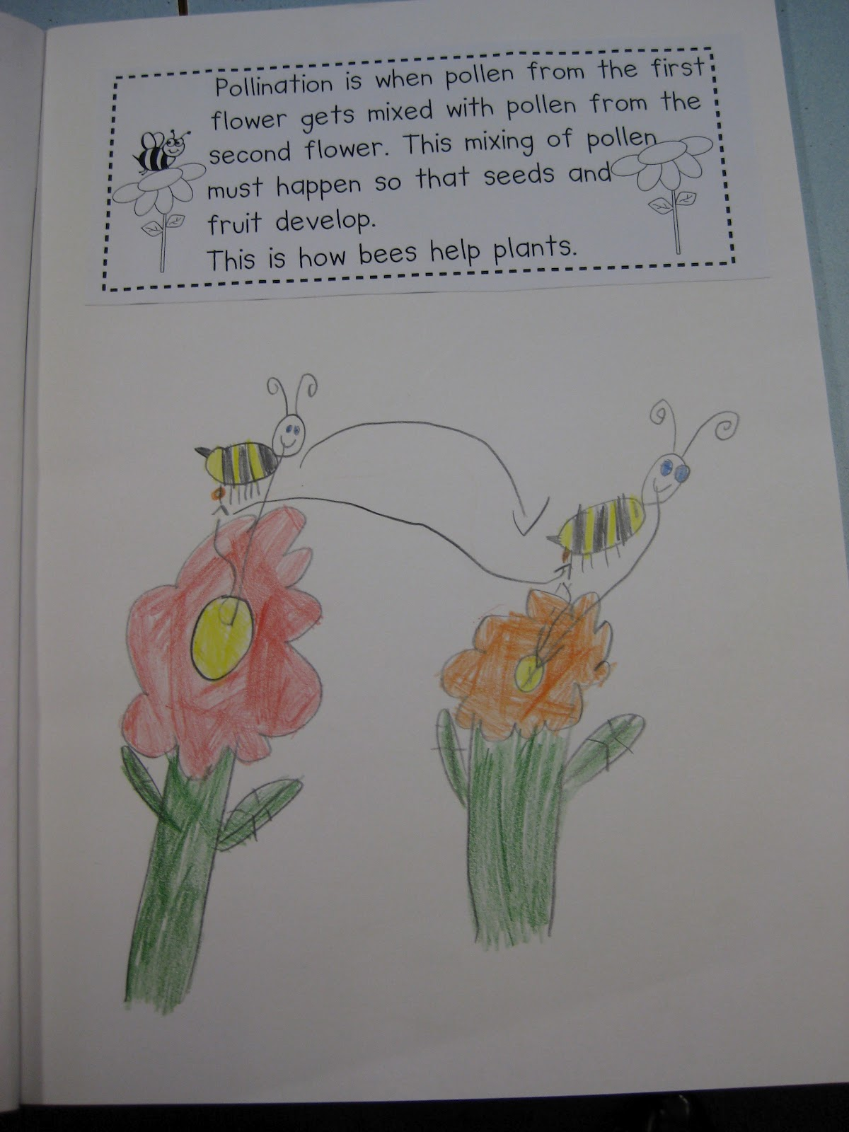 Classroom Fun Bees