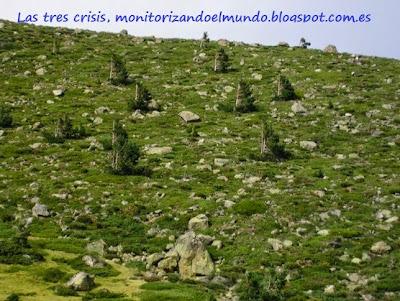 Informe de vientos de Madrid