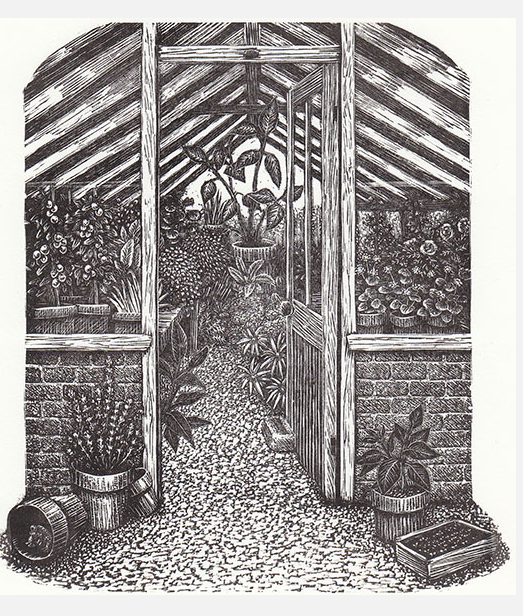 Greenhouse by Geri Waddington