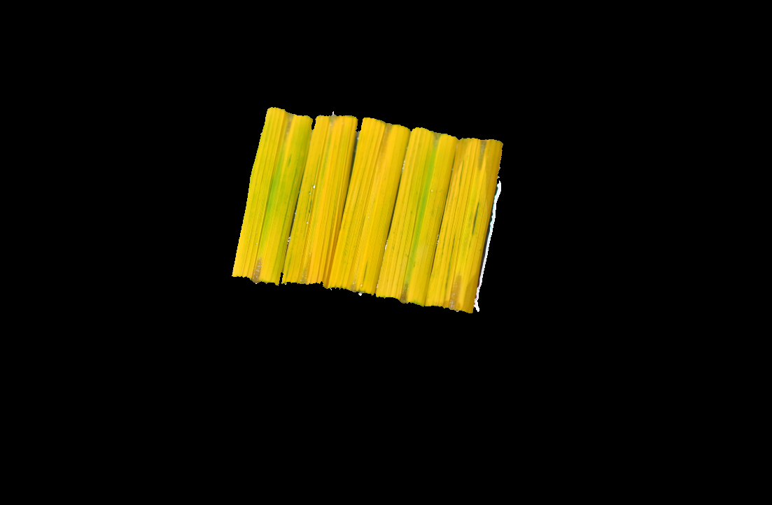 Qt and openCV: Segmenting leaf by openCV2--02 : Segment leafs to