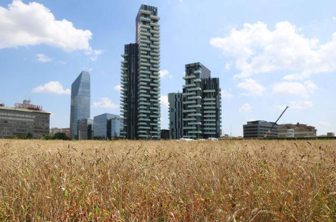 Vista del Wheatfield de Milán durante la Expo 2015