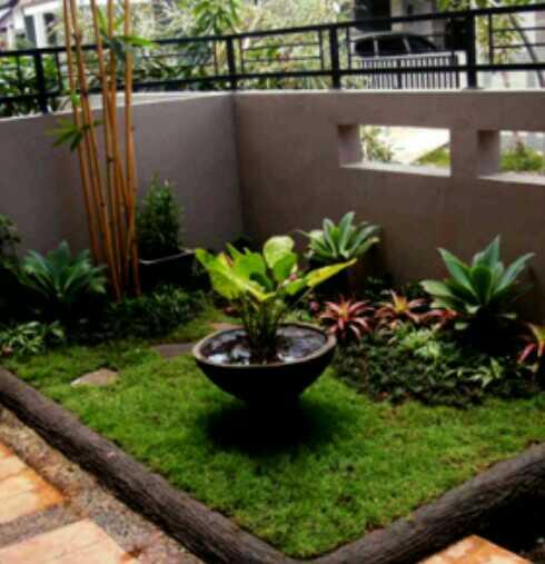 taman depan rumah minimalis lahan sempit terbaru