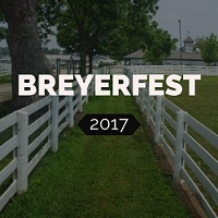 Want To See The 2017 Breyerfest                      posts?