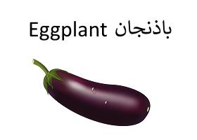 باذنجان : Eggplant