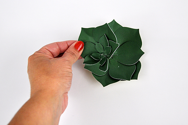 Father's Day Paper Succulents by Jen Gallacher for www.jengallacher.com #fathersday #papersucculent #papercraft