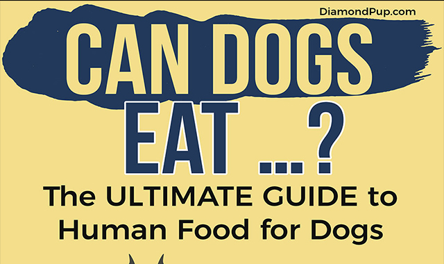 Can Dogs Eat Ultimate Guide to Human Food for Dogs
