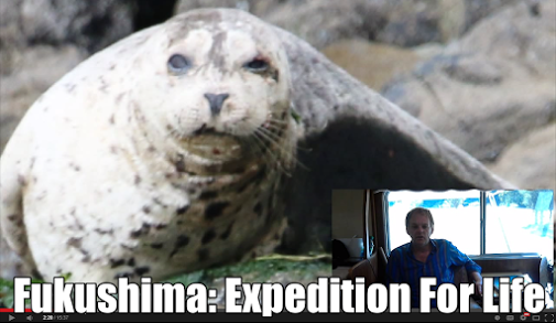 Fukushima Expedition