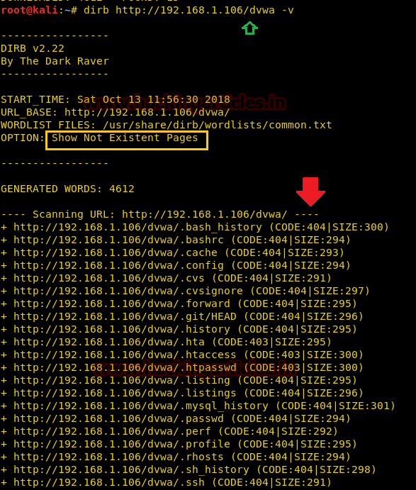 Comprehensive Guide to Dirb Tool | Hack News