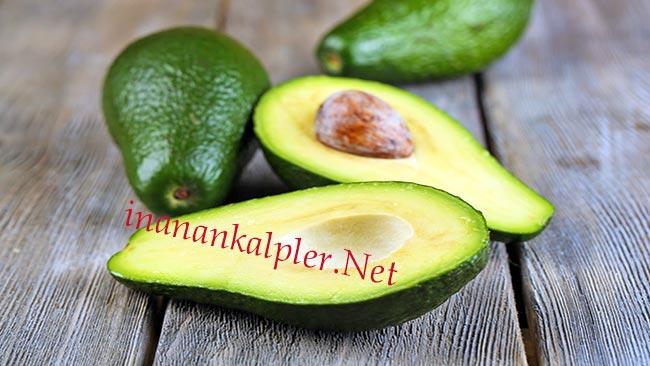 Avokado - www.inanankalpler.net