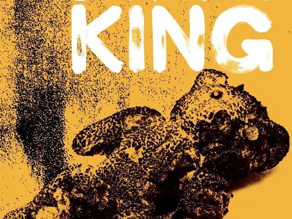 [Resenha] A Incendiária, de Stephen King e Suma (do Grupo Companhia das Letras)