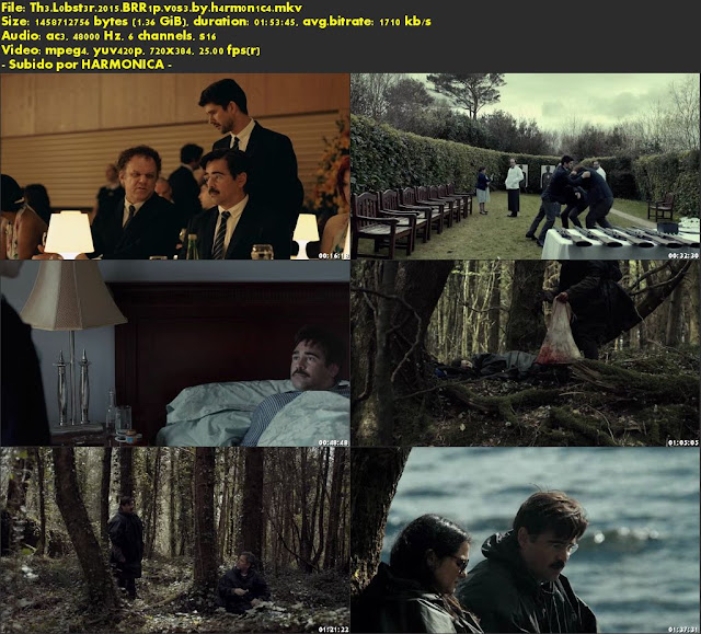 Descargar The Lobster Subtitulado por MEGA.