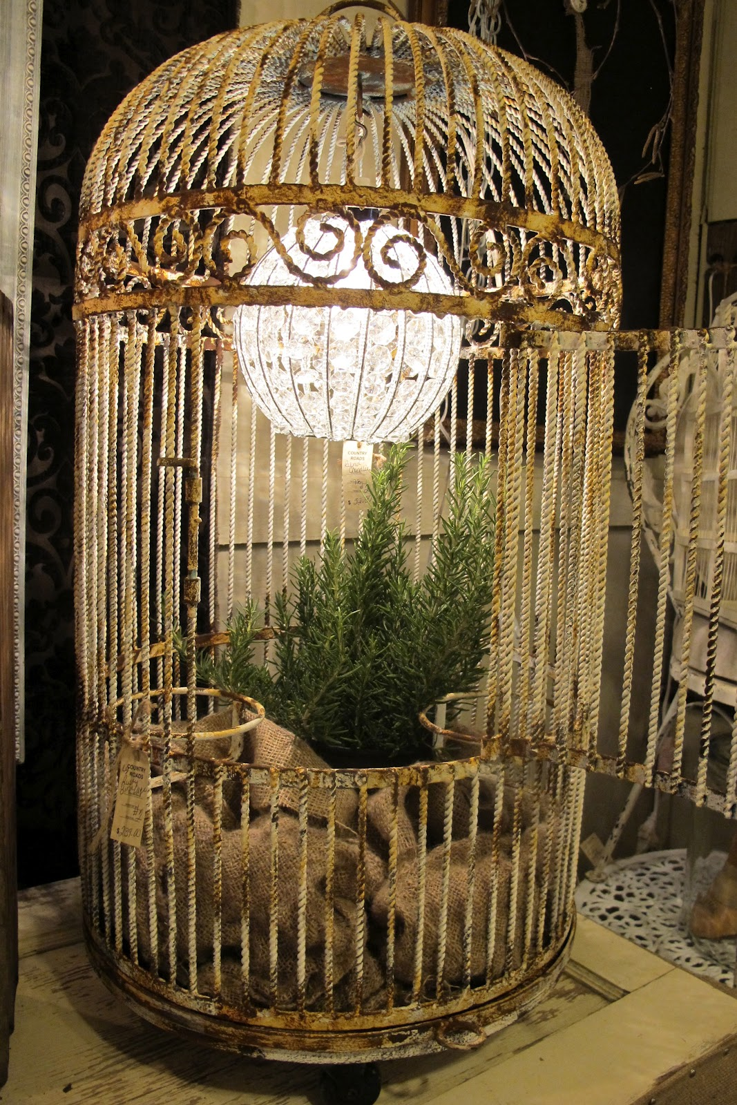 1000 Ideas About Birdcage Light On Pinterest Birdcages