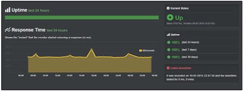 server uptime 100%