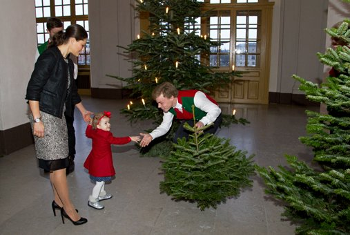 Crown Princess Victoria and Princess Estelle received this year's christmas tree from a group of agricultural students
