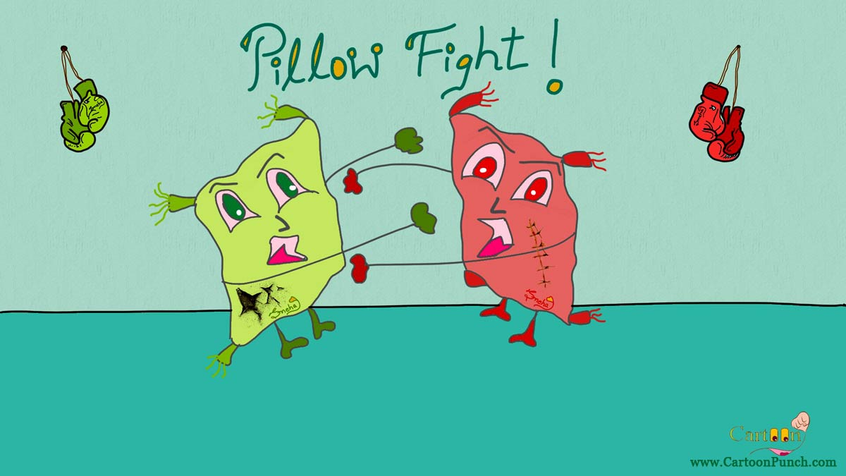 Green and red Pillow fight with boxing gloves hanging behind in ring cartoon by sneha
