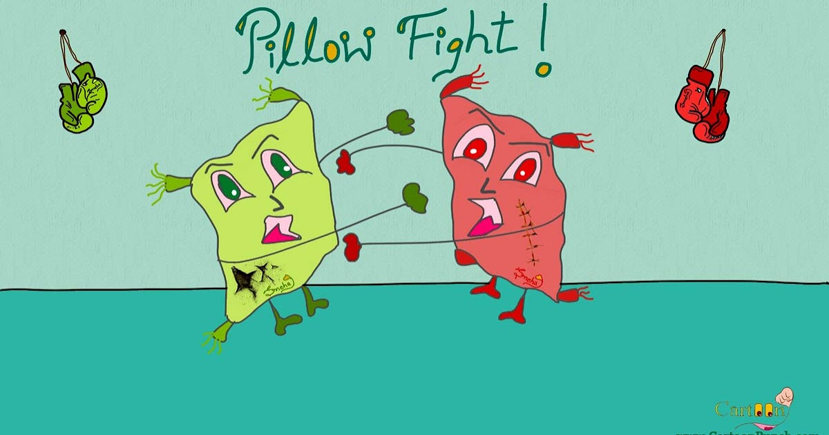 [Image: pillow-fight-of-siblings-boxing-punch-gloves.jpg]