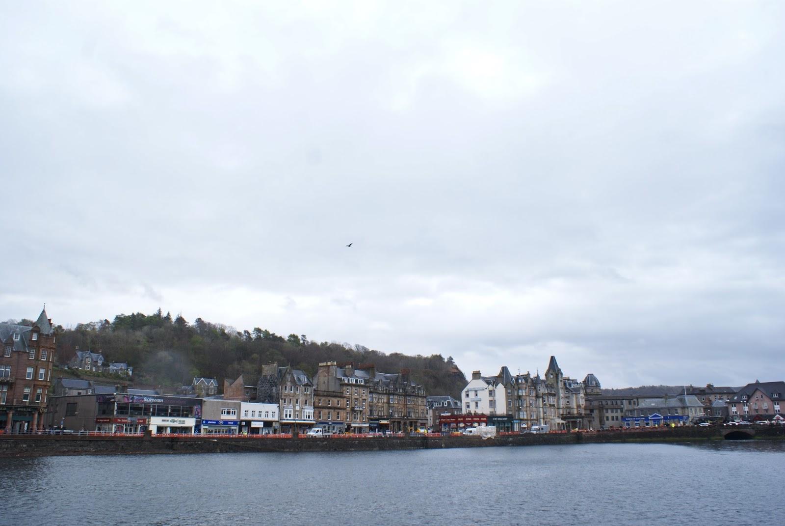 oban argyll highlands scotland uk great britain camomille blend