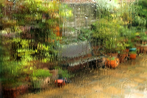 Above the River: Rain, chillies, books and a little ...