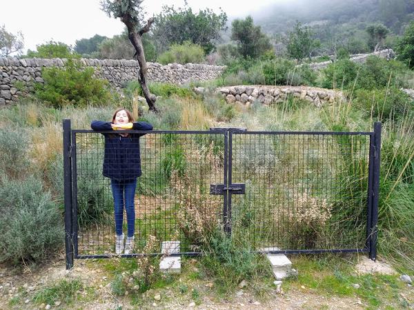 excuriones en Mallorca