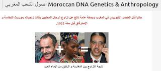 أصول الشعب المغربي