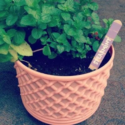garden markers, diy home decor, diy projects, do it yourself projects, diy, diy crafts, diy craft ideas, diy home, diy decor