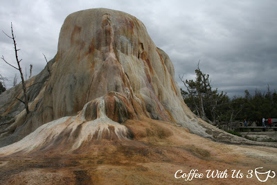Tips for Visiting Yellowstone by Coffee With Us 3 #vacation