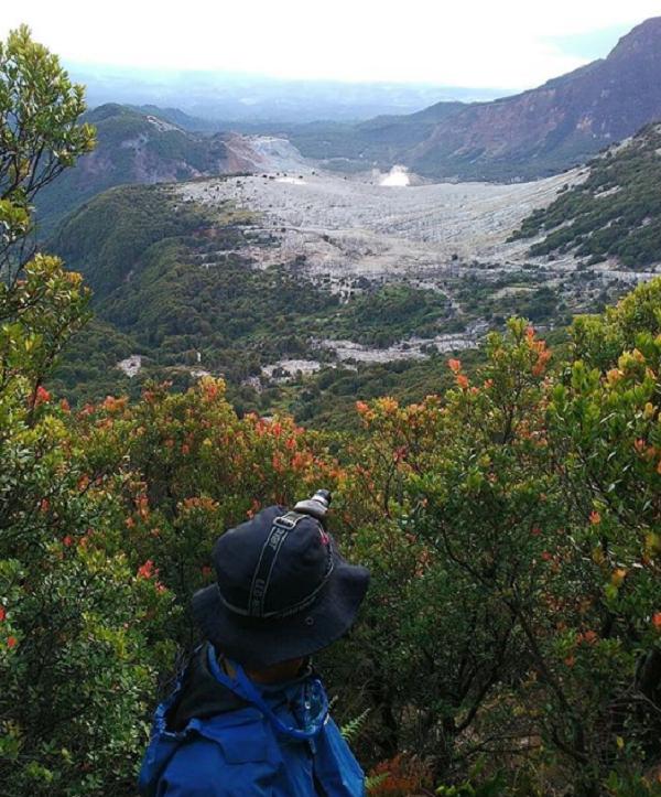 Tempat wisata di garut Gunung Papandayan