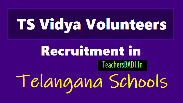 ts vidya volunteers recruitment 201,telangana vidya volunteers recruitment 2018,ts vvs recruitment 2018,ts vidya volunteers recruitment online application form 2018,ts vidya volunteers recruitment selection list results at http://cdse.telangana.gov.in/home.do