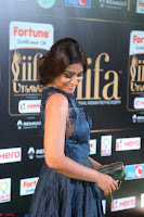 Shriya Saran in Beautiful Transparent Dark Gown IIFA Utsavam Awards 2017 001.JPG