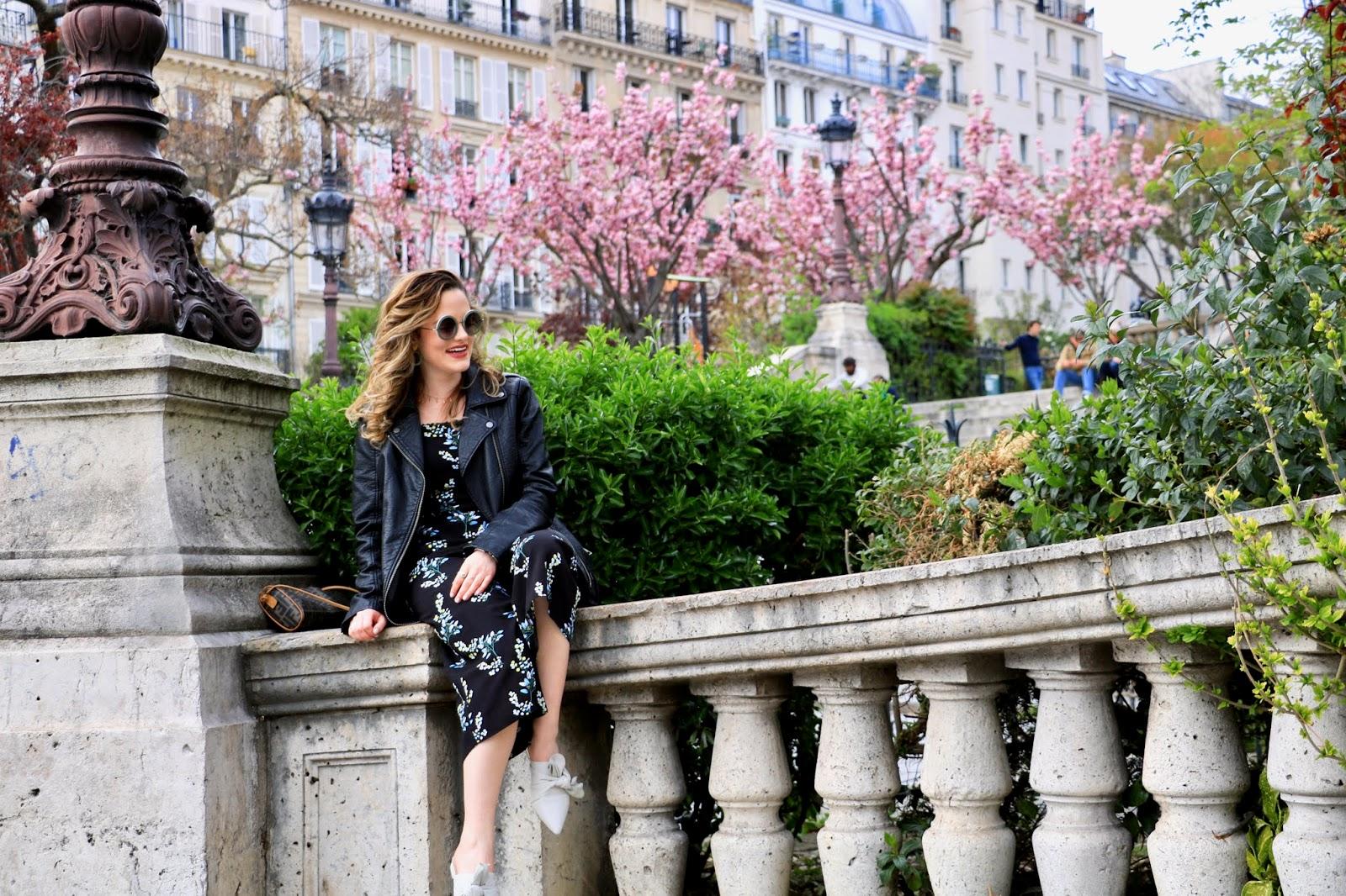 Paris cherry blossoms in april 2019